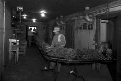 Sorting bananas at the Nash Finch Company Warehouse