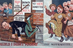 Anti-Suffrage cartoon